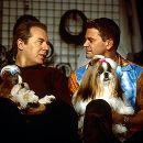 In New York, professional handler Scott Donlan (John Michael Higgins, left) and his longtime partner, hair salon owner Stefan Vanderhoof (Michael McKean, right), happily anticipate the event as they feel that one of their Shih Tzus, Miss Agnes, stands a v