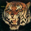 Tiger - 280 x 280