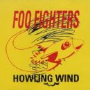 Foo Fighters - Howling Wind