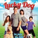 Lucky Dog  -  Poster