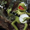Kermit The Frog - 300 x 225