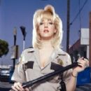 Wendi McLendon-Covey In Character as Deputy Clementine Johnson from Reno 911! - 285 x 399