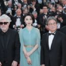 Fan Bingbing – 'Ismael's Ghosts' Screening at 70th Annual Cannes Film Festival in France - 454 x 303