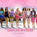 The House Bunny Wallpaper