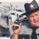 Sheriff J.W. Pepper - 454 x 324