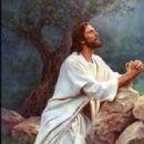 Jesus - 331 x 448