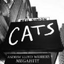 Cats (musical) - 454 x 301