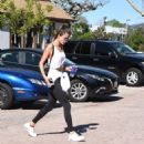 Alessandra Ambrosio Gets Her Workout in - 454 x 487