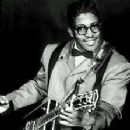 Bo Diddley - 223 x 310