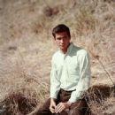 Anthony Perkins - 454 x 454