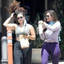 Nia Peeples – Out in Malibu