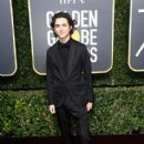 Timothee Chalamet At The 75th Golden Globe Awards (2018)