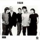 Tiger - 454 x 361