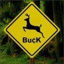 Buck - 130 x 130
