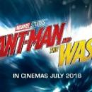 Ant-Man and the Wasp (2018) - 454 x 151
