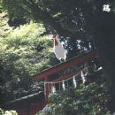 Merzbow - Niwatori: 13 Japanese Birds Pt. 10