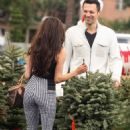 Courtney Stodden is not pining for Doug this holiday... as she goes tree shopping with hunky man - 454 x 715