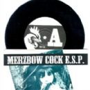 Merzbow - Music From Man With No Name