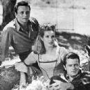 Brigadoon Starring Robert Goulet,Peter Falk,Sally Anne Howles, - 303 x 400