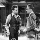 Humphrey Bogart - 255 x 198