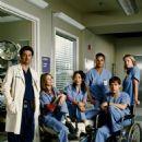 Grey's Anatomy Season photos - 454 x 601