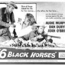 Six Black Horses - 350 x 278