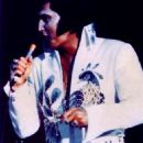 Elvis Peacock - 454 x 766