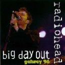 Big Day Out Galway 96