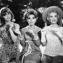 Ginger, Mary Ann & Mrs. Howell
