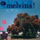 The Melvins Album - 26 Songs