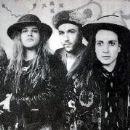 Mother Love Bone - 267 x 179