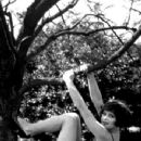 Clara Bow - 350 x 525