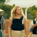 Snatched (2017) - 454 x 188