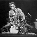 Chuck Berry - 250 x 185