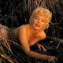 Newly released photos of Marilyn Monroe feature the icon looking more casual and candid than ever. Legendary photojournalist Eve Arnold snapped Monroe on the set of her 1961 film The Misfits, co-starring Clark Gable and directed by her ex-husband Arthur M