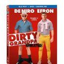 Dirty Grandpa (2016) - 454 x 529