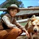 Tommy Kirk - 454 x 320