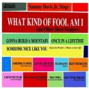 Sammy Davis Jr. - What Kind of Fool Am I: And Other Show-Stoppers