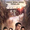 The Maze Runner  -  Poster