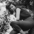 Susan Harrison - 454 x 580