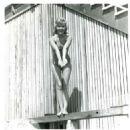 How to Stuff a Wild Bikini - 454 x 453