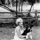 Marilyn Monroe - 454 x 603