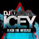 DJ Icey - Flash the Message