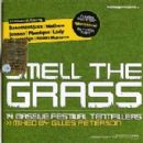 Gilles Peterson - Mixmag presents Smell The Grass