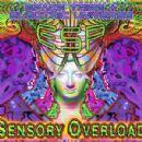 ESP Album - Sensory Overload