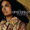 Amel Larrieux - Morning