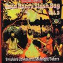 Raja Ram Album - Raja Ram's Stash Bag vol.3 - Unmixed Edition