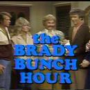 The Brady Bunch Hour - 360 x 240