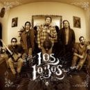 Los Lobos Album - Wolf Tracks: The Best of Los Lobos