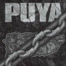 Puya - Puya